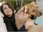 La pr�xima generaci�n de la electr�nica nos permitira la comunicaci�n con los animales.