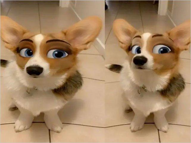 ¿Cómo utilizar el filtro de Snapchat que convierte a tu perrito en personaje de Disney?