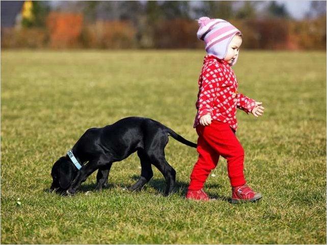 Â¿Son las mascotas los nuevos hijos?