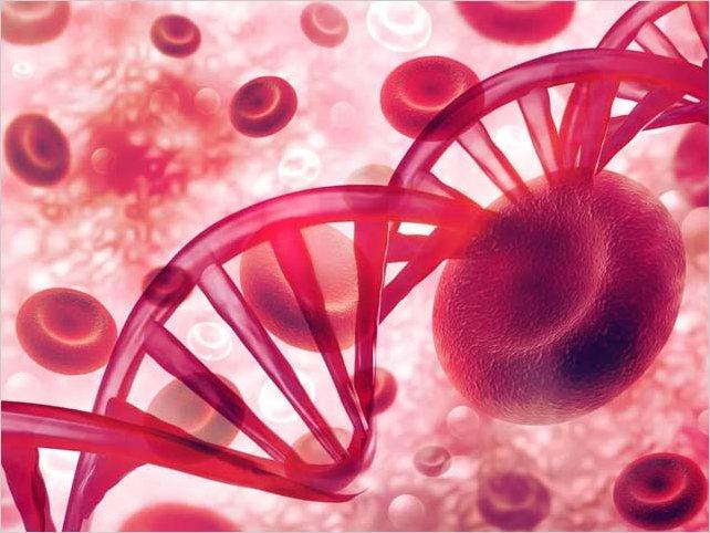 Estados Unidos usará el plasma de quienes superaron el COVID-19 para tratar a enfermos