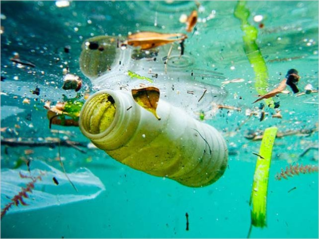 OMS exhorta a reducir drásticamente la contaminación por plásticos