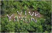 Yasunidos debe recoger 120.000 firmas en 38 d�as para forzar la consulta popular